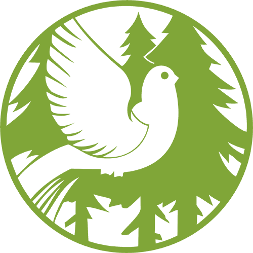logo_kataskinoshs_500x500